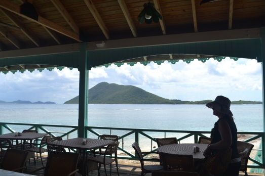 View from the original Pusser's restaurant